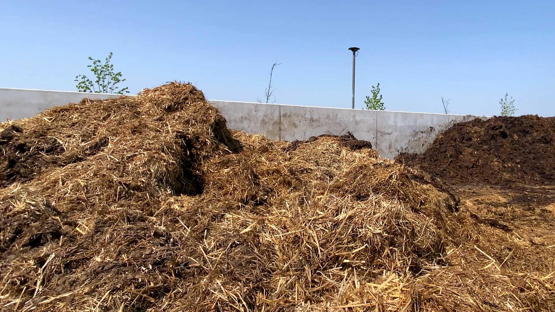 pferdemist entsorgen, Pferdemist entsorgen in einer Biogasanlage