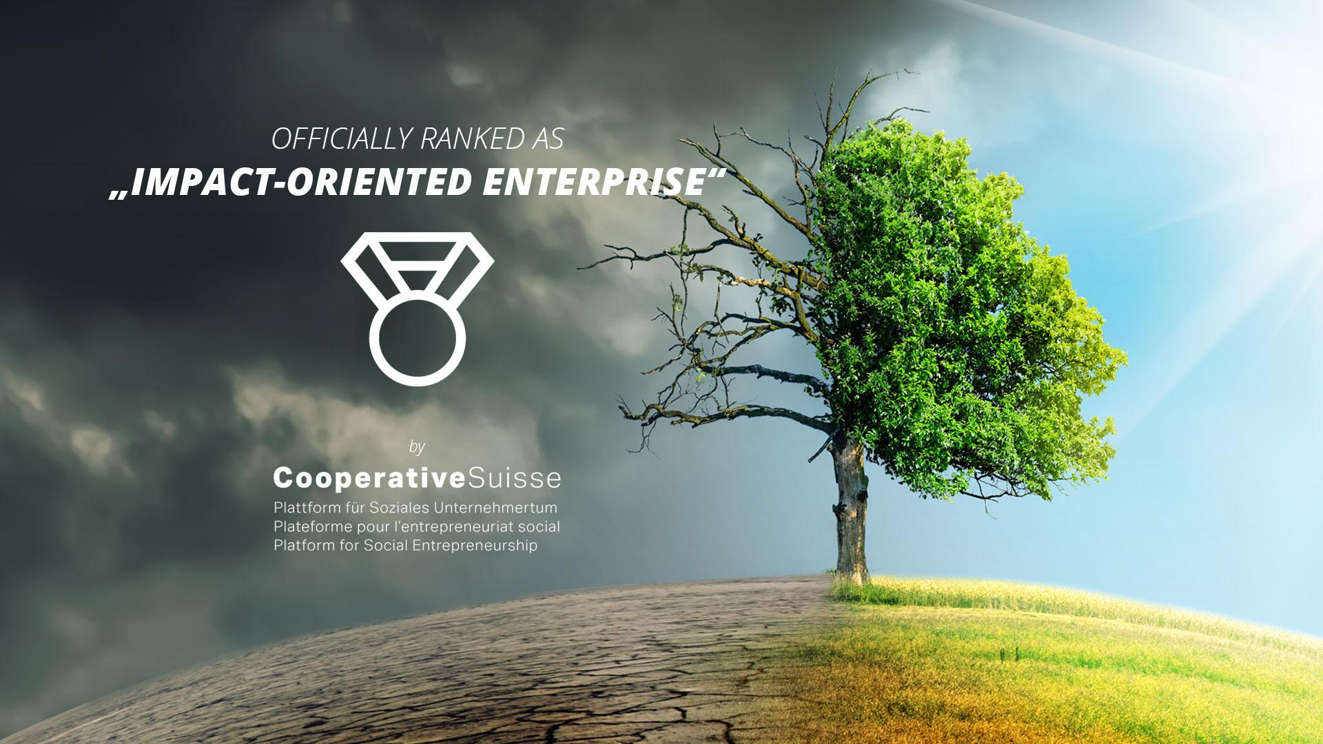 , Auszeichnung: Social Impact Unternehmen
